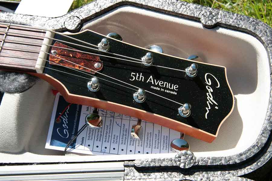 Different types of guitars and their functionalities